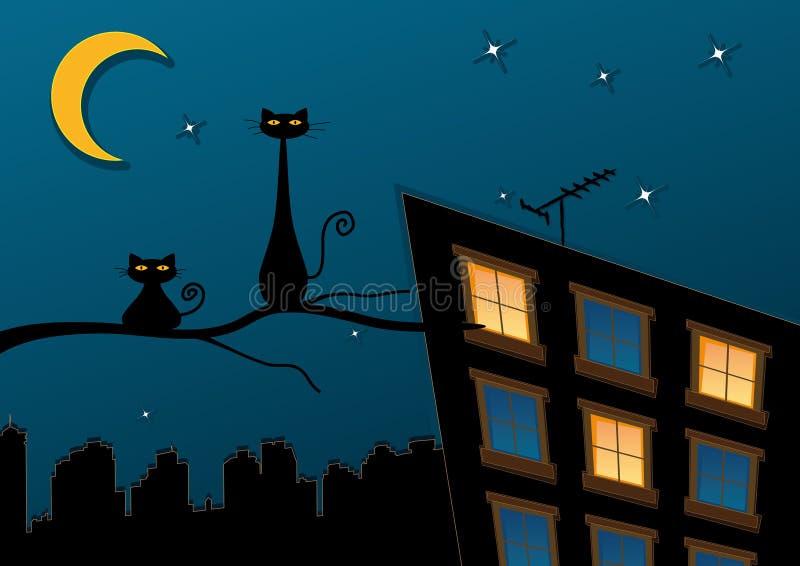Gatos pretos na cidade da noite ilustração stock