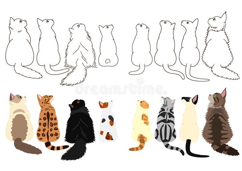 Gatos que olham acima lateralmente em duas fileiras ilustração royalty free