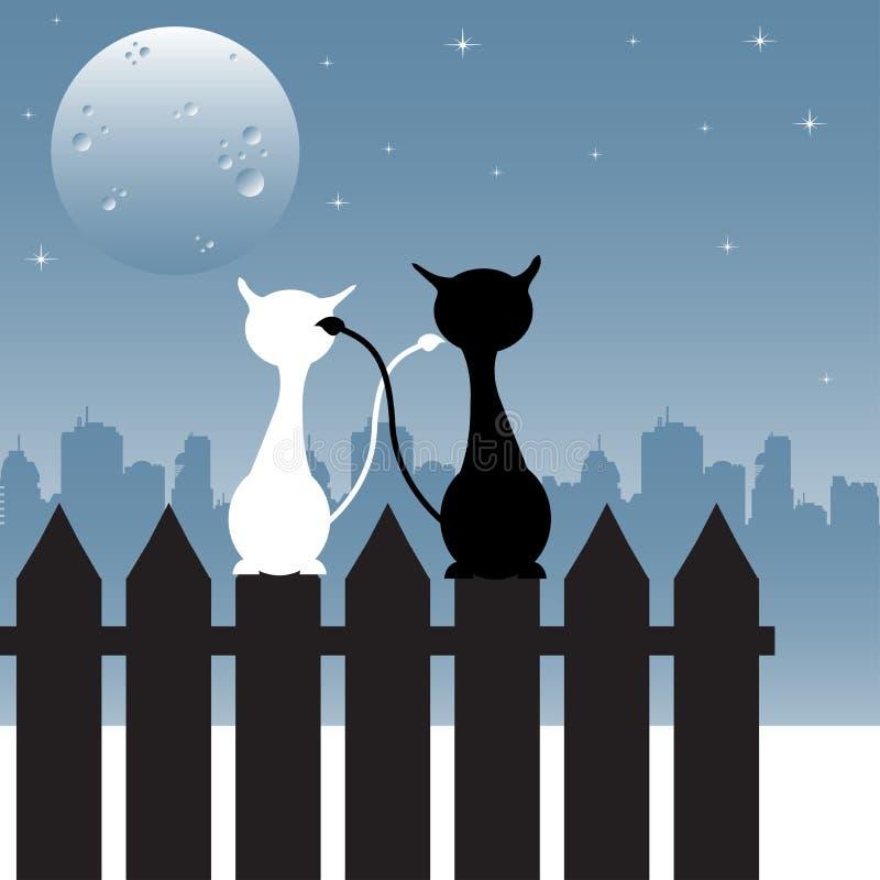 Gatos que olham fixamente na lua ilustração stock