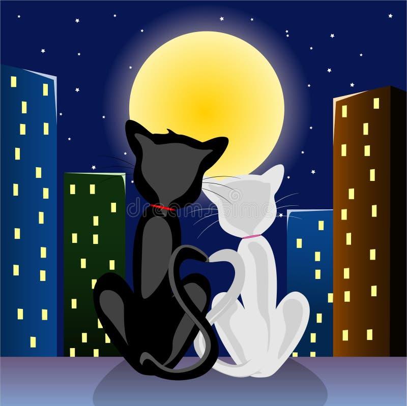 Download Gatos románticos stock de ilustración. Ilustración de negro - 1288379