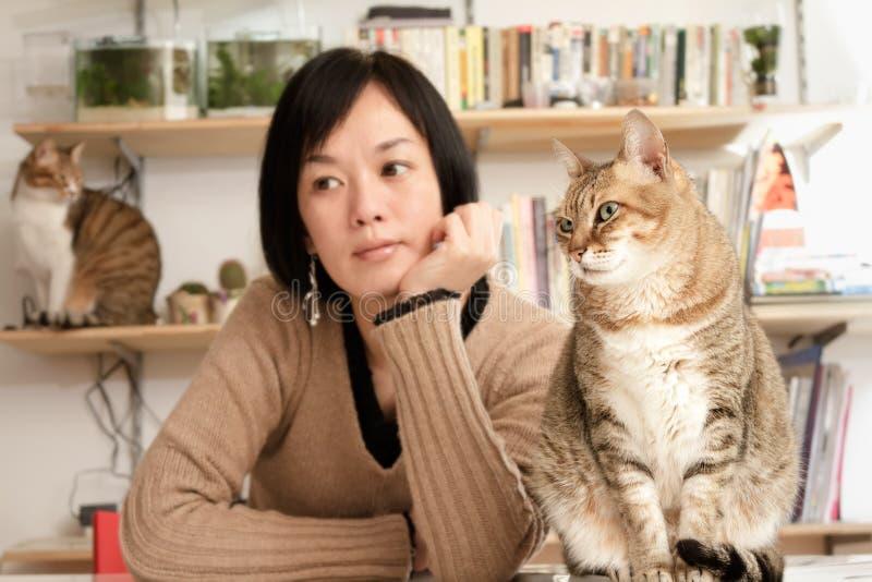 Gatos y mujer fotografía de archivo libre de regalías