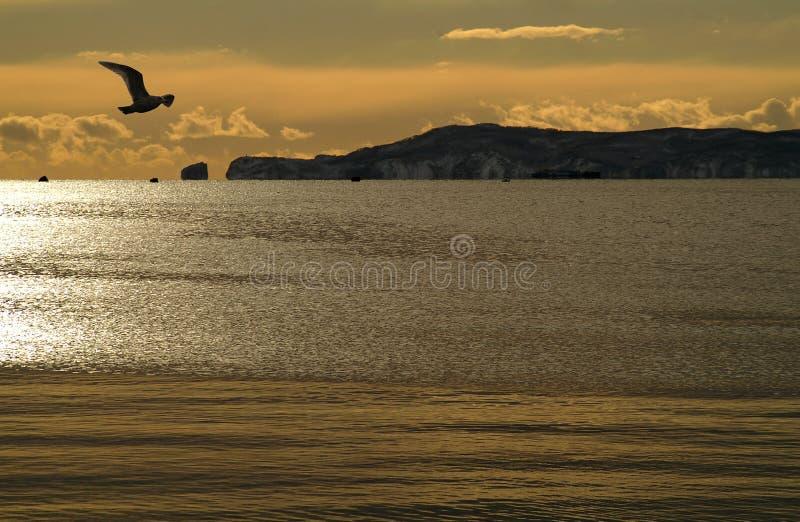 Gatter im Ozean. stockfotografie
