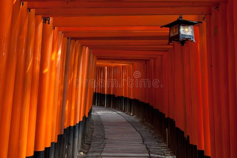 Gattertunnel Fushimi Inari Am Schrein - Kyoto, Japan Stockfotografie