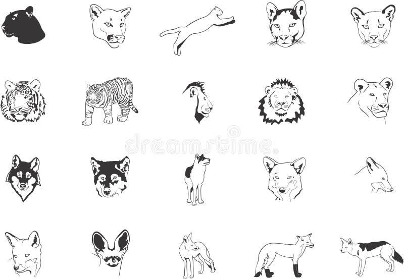 Gatti e volpi selvaggi illustrazione vettoriale
