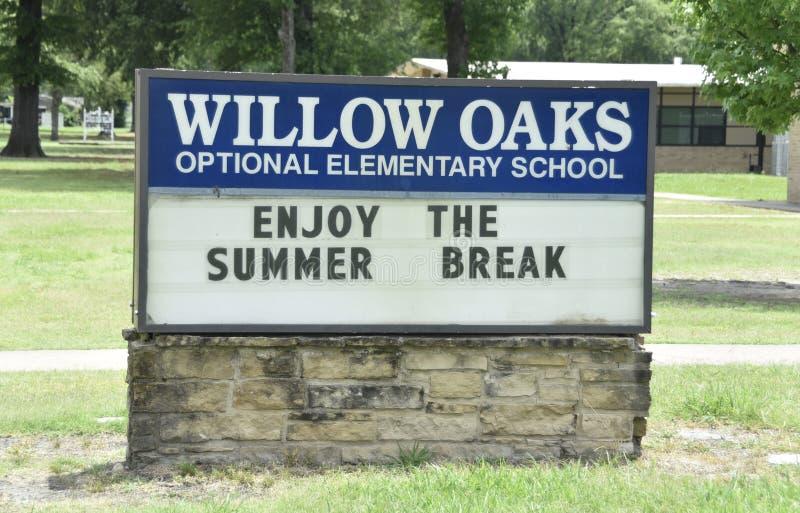 Gatti selvatici di Willow Oaks School Elementary School, Memphis, TN immagine stock