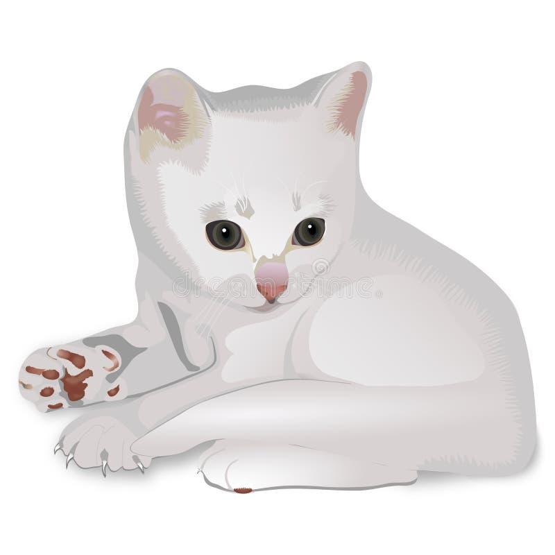 Gattino illustrazione vettoriale
