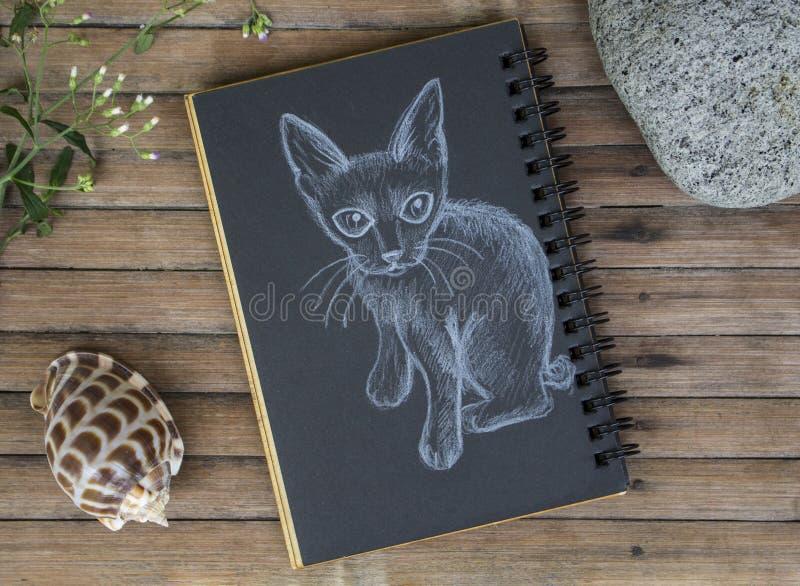Gattino con l'illustrazione disegnata a mano della piccola coda Gatto da gesso bianco su carta nera fotografia stock libera da diritti