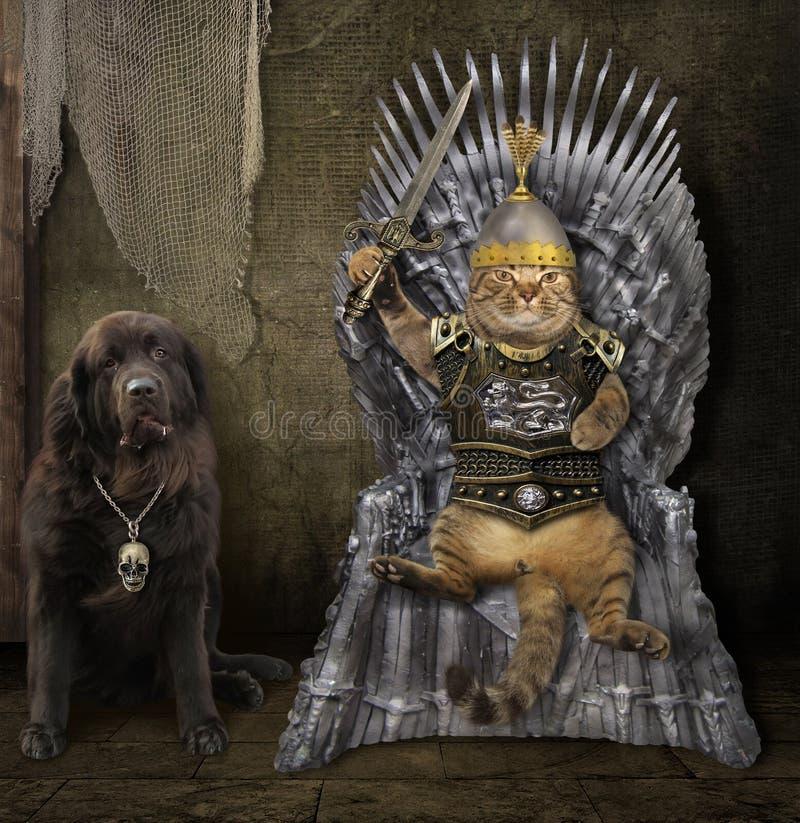Gatto in armatura sul trono del ferro con un cane immagini stock