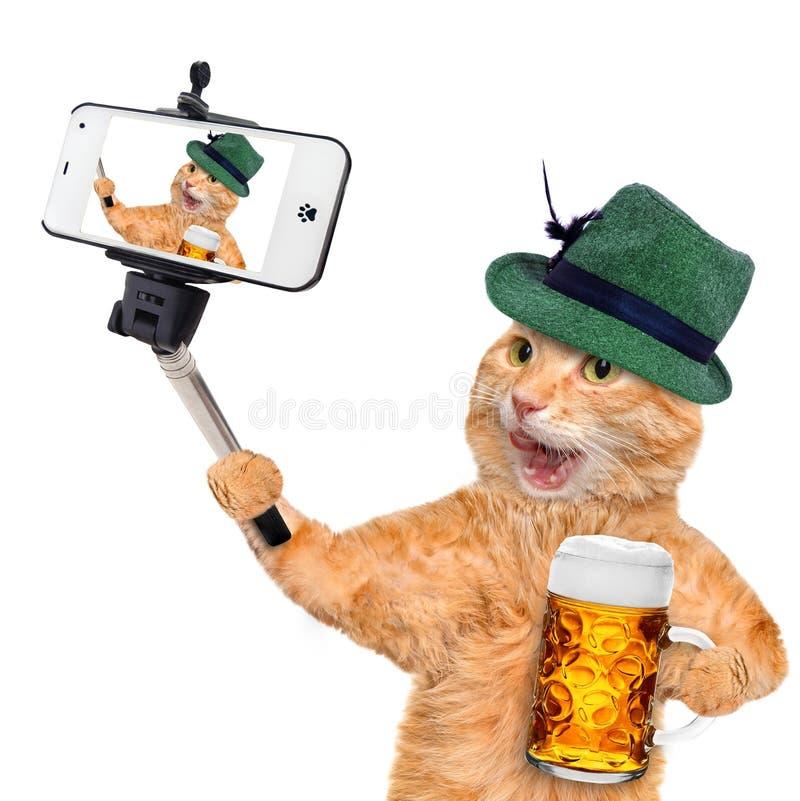 Gatto che prende un selfie con uno smartphone fotografia stock libera da diritti