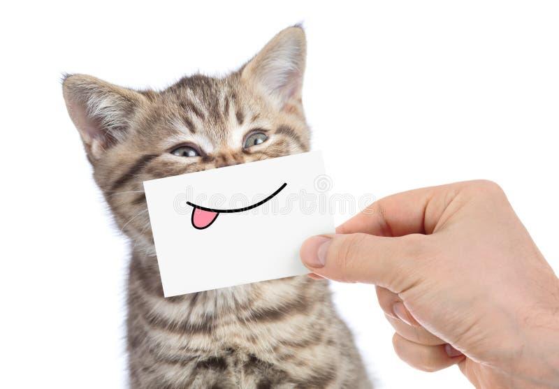 Gatto con il sorriso divertente della lingua isolato su bianco fotografia stock libera da diritti