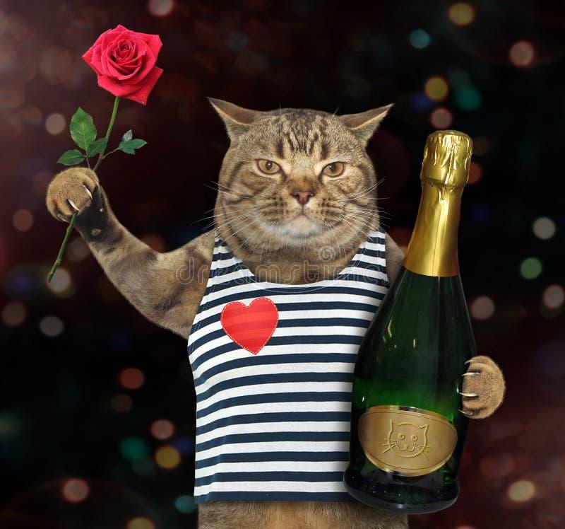 Gatto con rosa e vino 2 immagine stock