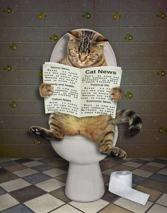 Gatto con un giornale sul wc 2 immagini stock libere da diritti