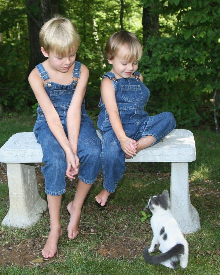 gatto dei ragazzi che osserva due giovani fotografia stock libera da diritti