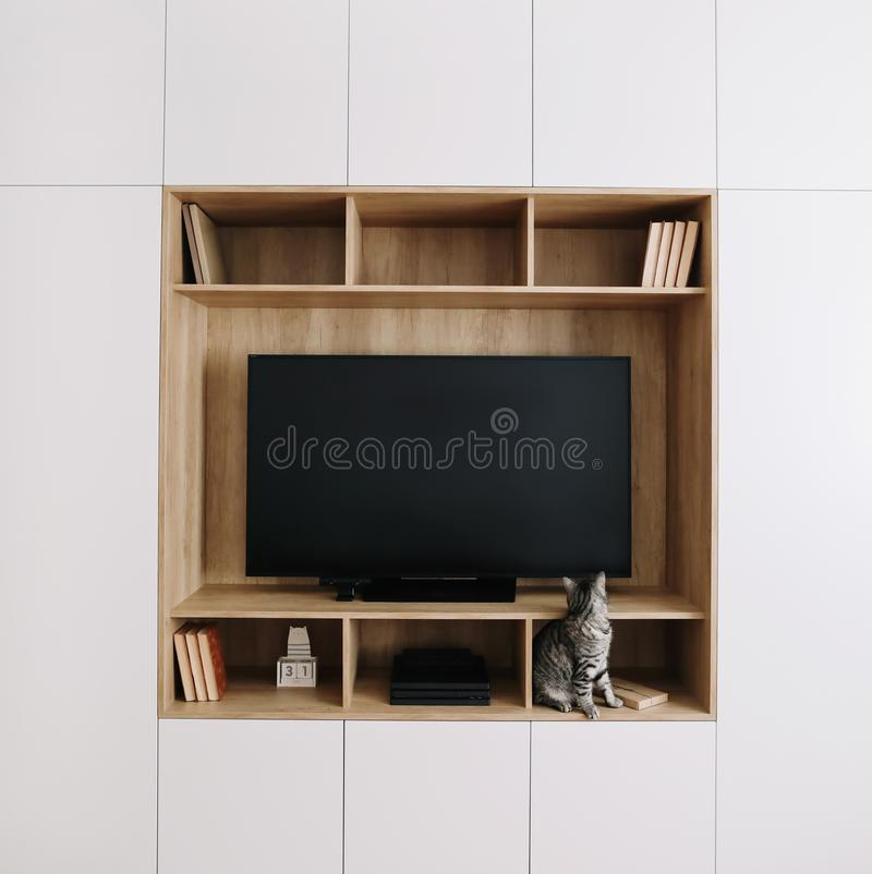 Gatto divertente in un interno del salone con la TV e un guardaroba stile scandinavo, concetto minimo interior design vivente mod immagini stock libere da diritti