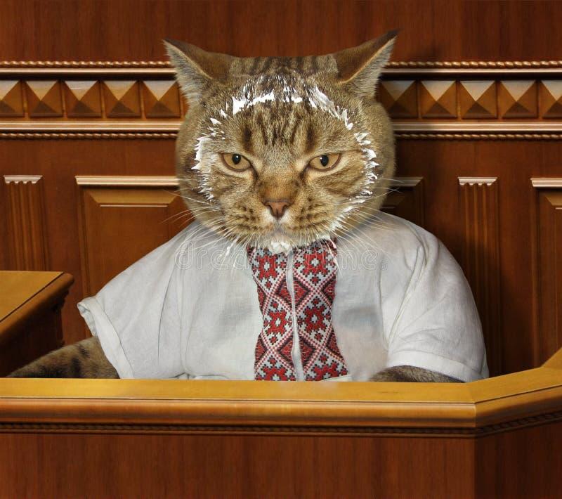 Gatto e panna acida immagini stock libere da diritti