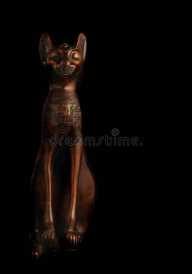 Gatto egiziano immagine stock