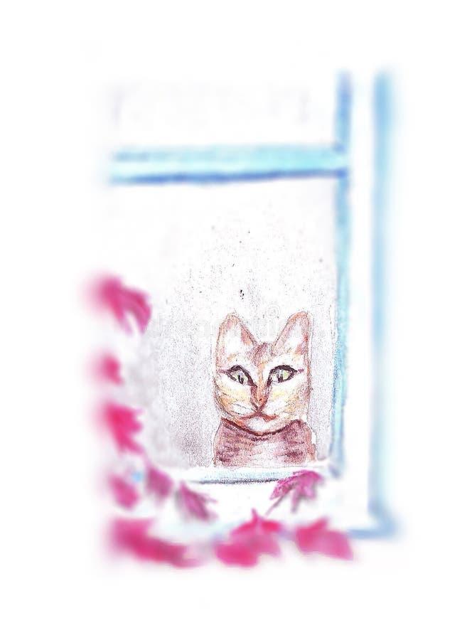 Gatto nella finestra con le foglie dei platanos fotografia stock