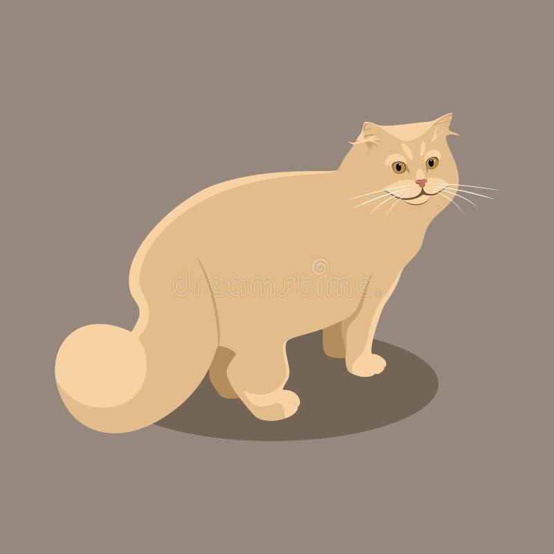 Gatto persiano lanuginoso rosso stante su un fondo marrone illustrazione di stock