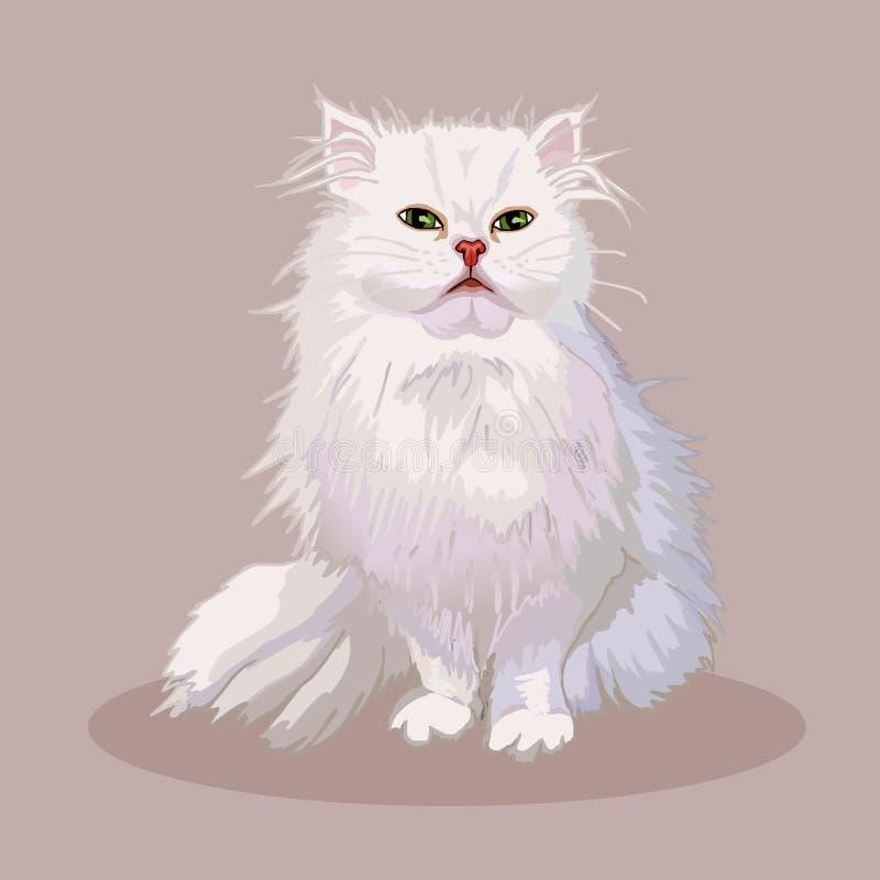 gatto persiano Razza del gatto Animale domestico favorito Gattino lanuginoso adorabile con gli occhi verdi Vettore realistico royalty illustrazione gratis