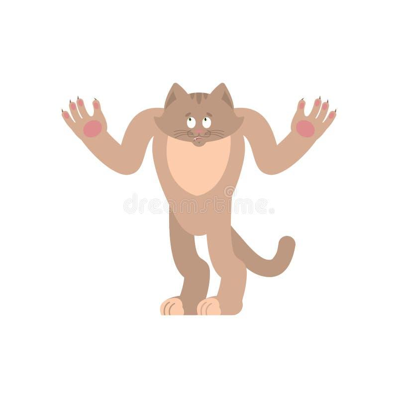 Gatto sconcertante oops Emozioni perplesse dell'animale domestico sorpresa del gattino Vecto illustrazione di stock
