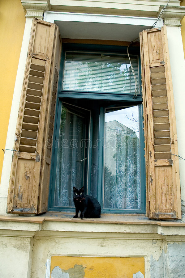 Gatto sul davanzale della finestra fotografia stock immagine di vecchio finestra 389020 - Davanzale finestra ...