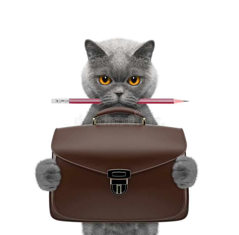 Gatto sveglio dell'uomo d'affari dell'impiegato di concetto con la valigia o borsa isolata su bianco immagini stock