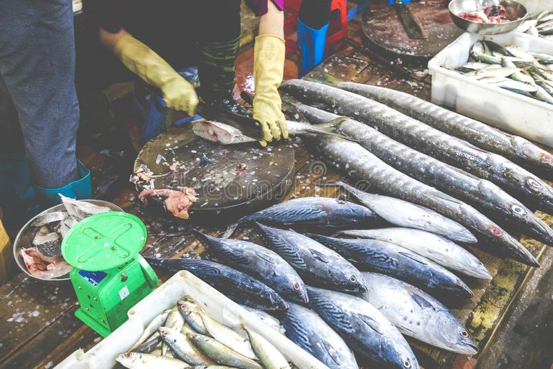 Gatuförsäljare i Cat Ba Island, Vietnam traditionell fiskmarknad arkivfoton
