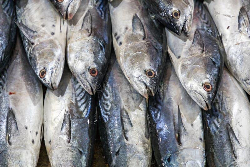 Gatuförsäljare i Cat Ba Island, Vietnam traditionell fiskmarknad royaltyfri bild