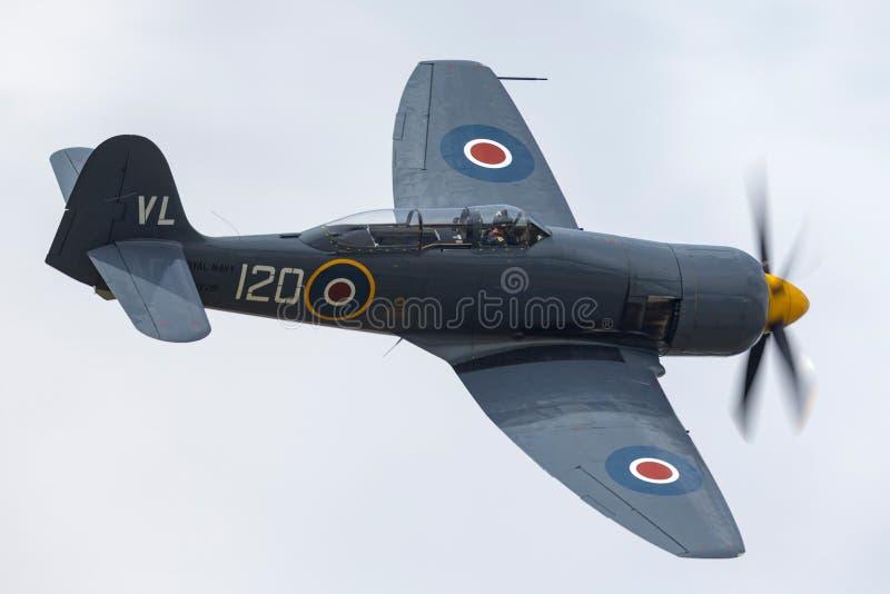 Gatuförsäljare Sea Fury T 20 G-RNHF av flyget för arm för hastig luft för Royal Navy som det historiska baseras på RNAS Yeovilton arkivbilder