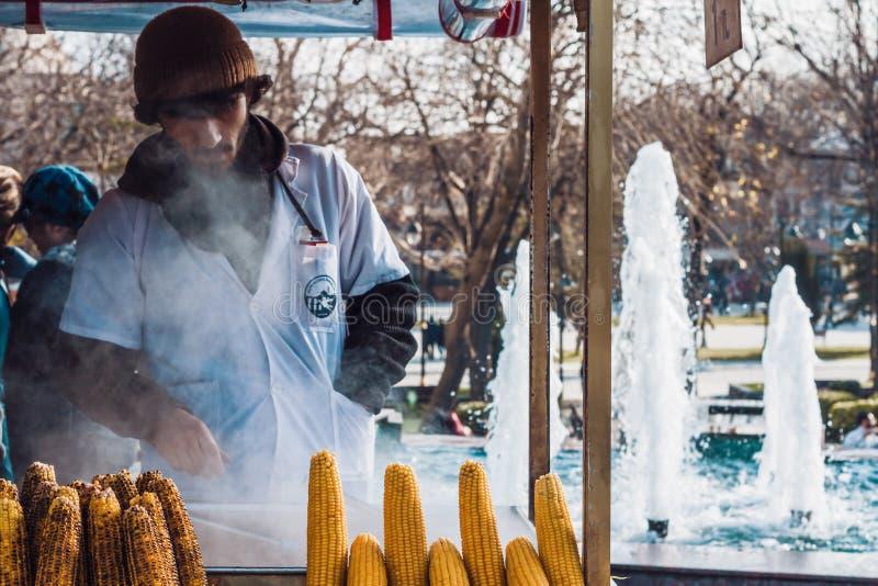 Gatuförsäljare som säljer grillad kastanjer och havre på majskolven royaltyfria foton