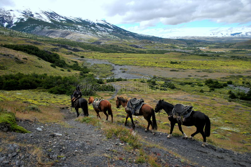 Gaucho riding in Torres del Paine royalty free stock images
