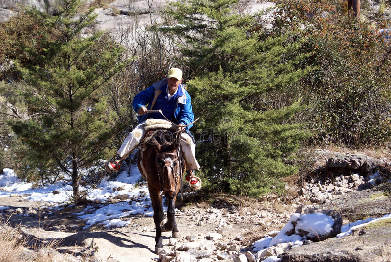 Gaucho in sneeuwbergen stock foto