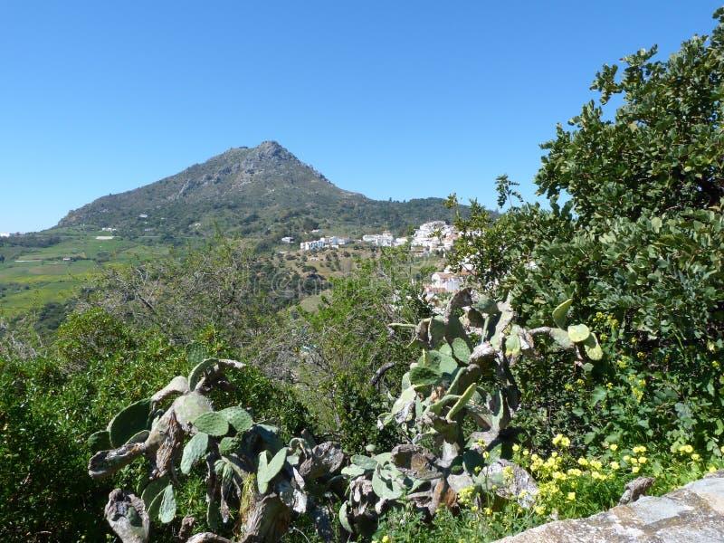 从Gaucin安达卢西亚西班牙的看法 免版税库存照片