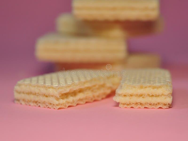 Gaufrette de vanille d'isolement sur le fond rose photographie stock libre de droits