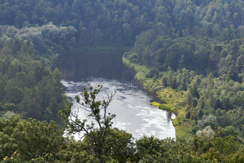 Gauja River stock photography