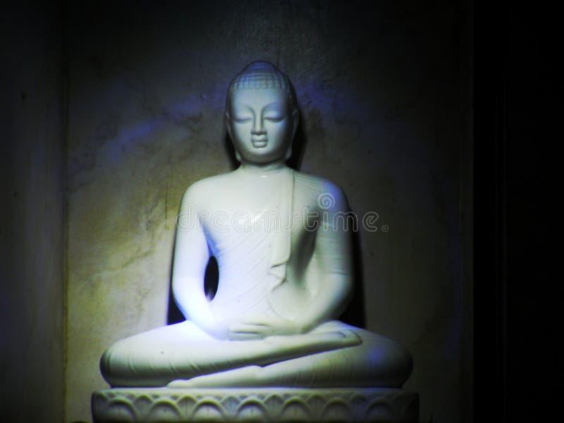 Gautama Buddha 库存图片