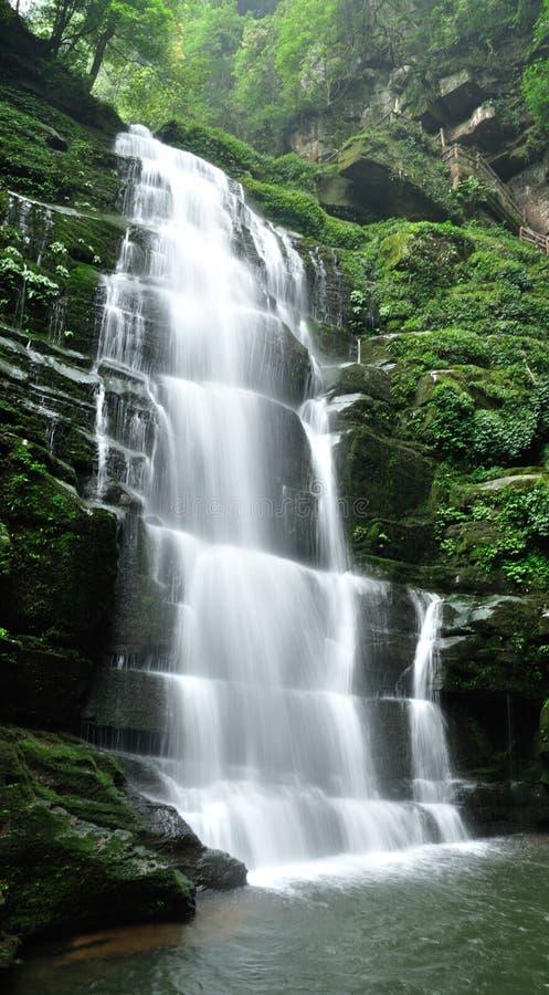 Download Gauze of falls stock image. Image of misty, flowing, botany - 26746517