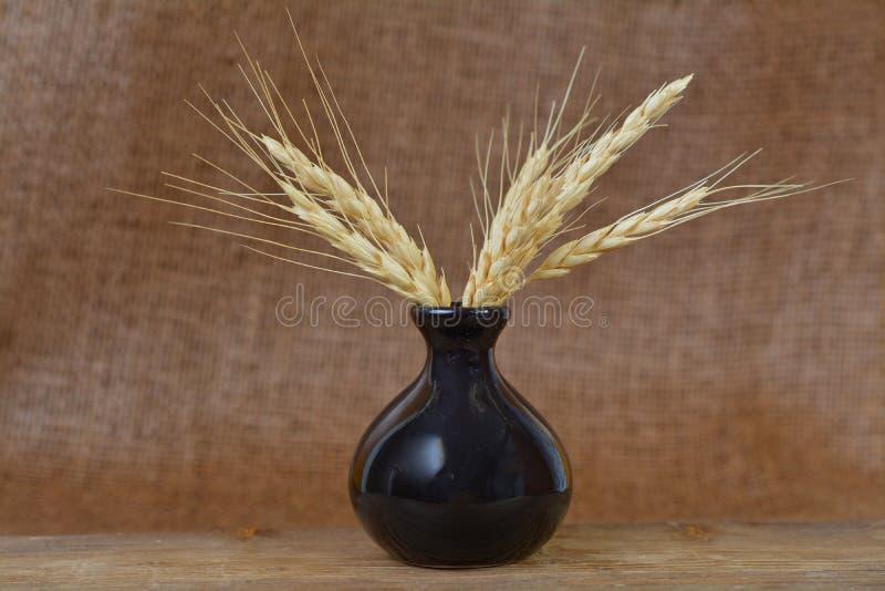 Download Gavilla de trigo imagen de archivo. Imagen de cabaña - 64212065