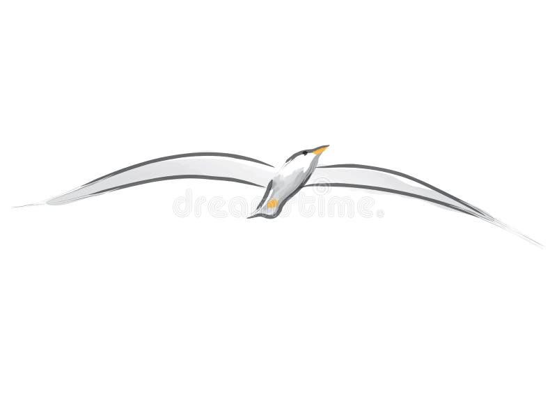 Gaviota (vector) ilustración del vector