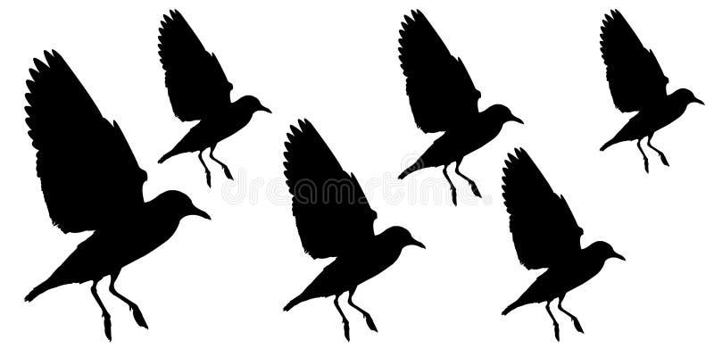 Gaviotas negras que vuelan el estilo aislado en fondo ilustración del vector