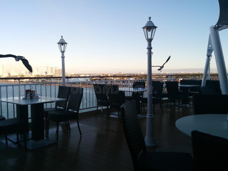 Gaviotas swooping sobre restaurante del barco de cruceros fotos de archivo