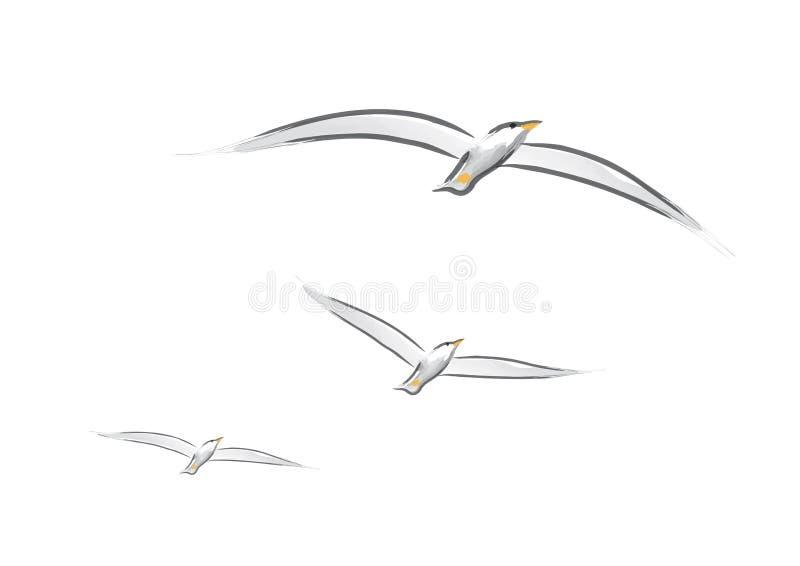 Gaviotas (vector) stock de ilustración