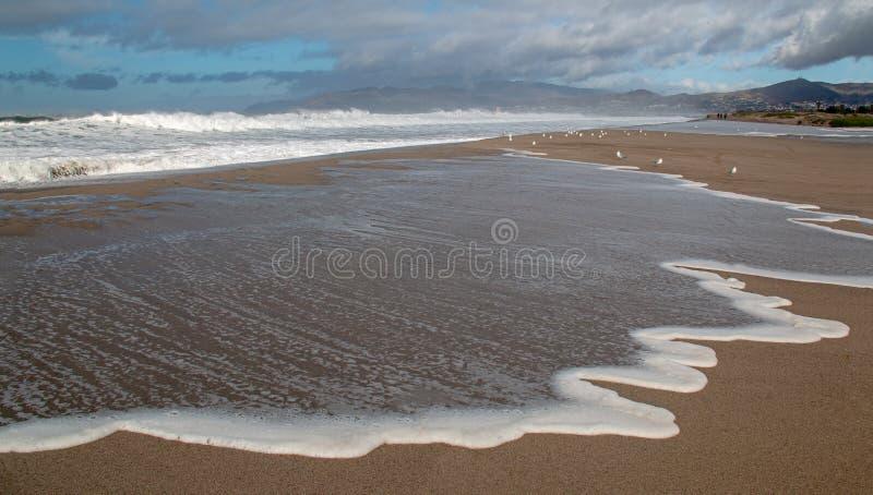 Gaviotas y seafoam del desbordamiento de levantamiento de la marea de la onda en el río Santa Clara en la playa de la loma de las imagen de archivo libre de regalías