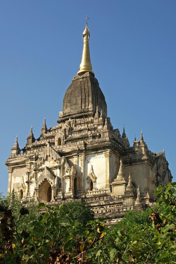 Gawdawpalin tempel, Bagan, Myanmar royaltyfri foto