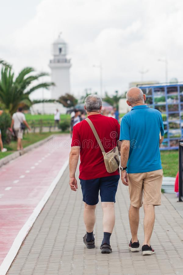 Gay couple walking away together on road royalty free stock images