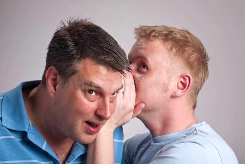 Gay gossip royalty free stock image