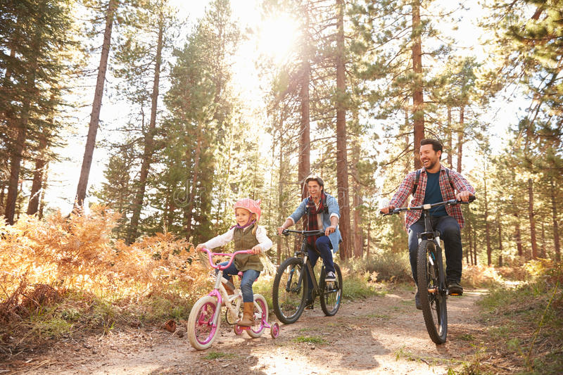 Gay Male Couple With Daughter Cycling Through Fall Woodland stock photo