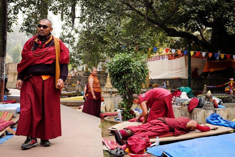 GAYA, ИНДИЯ - 3-ЬЕ ДЕКАБРЯ 2016: Буддийские монахи молят и размышляют на Bodh Gaya Stupa стоковые фотографии rf