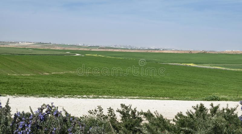 Gaza dal Negev occidentale in Israele fotografia stock