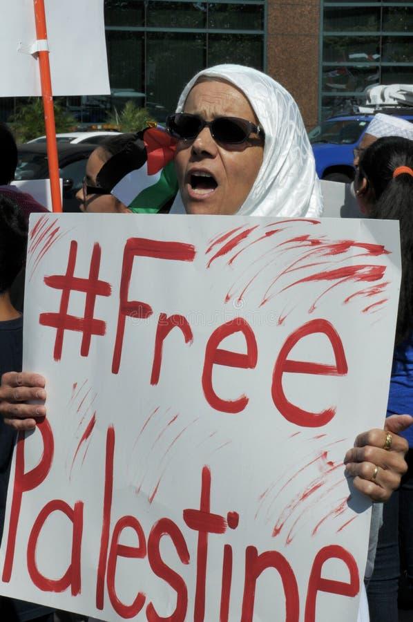 Gaza protest royaltyfria bilder